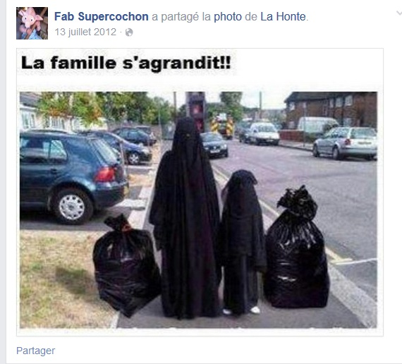 fabrice le guiniec fabsupercochon racisme